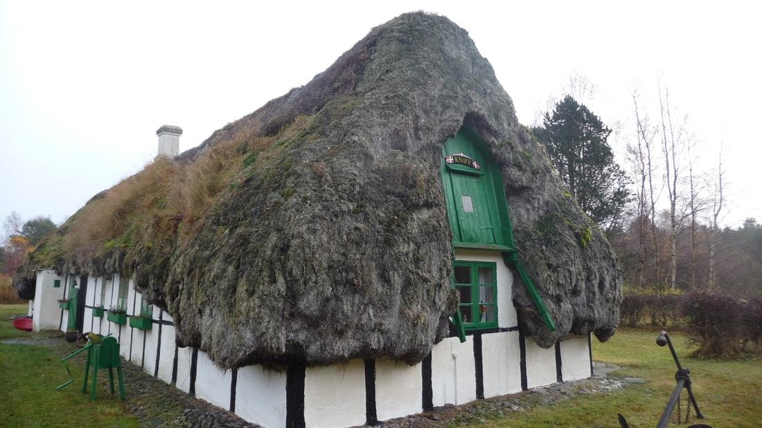 Tang tag med ålegræs på hus på Læsø